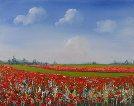 Picture with a poppy field. Landscape with oil.